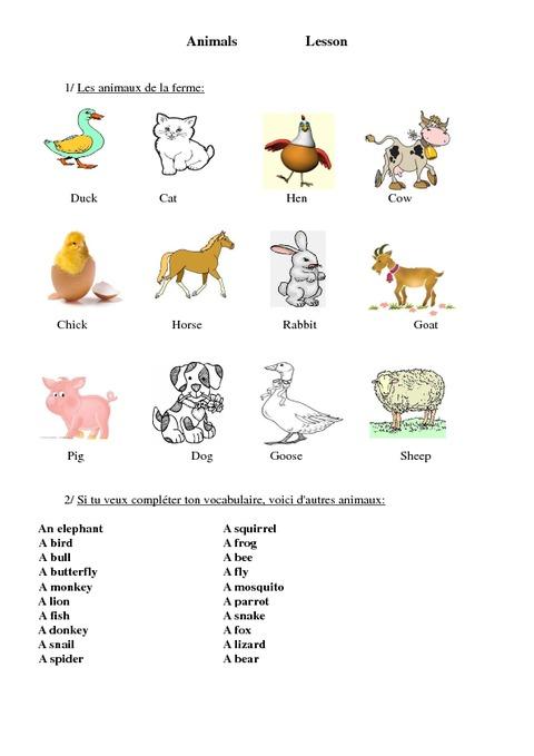 Bien-aimé Animaux - Animals - Ce2 - Cm1 - Cm2 - Leçon - Anglais - Cycle 3  UV84
