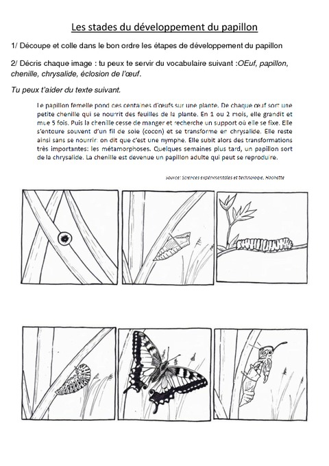 science et vie 1191 pdf 2016