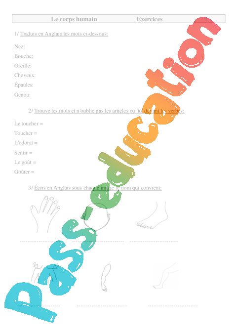 corps humain en anglais ce2 cm1 cm2 exercices anglais cycle 3 2 pass education. Black Bedroom Furniture Sets. Home Design Ideas
