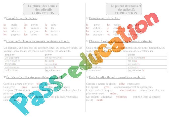 masculin et feminin des adjectifs exercices pdf