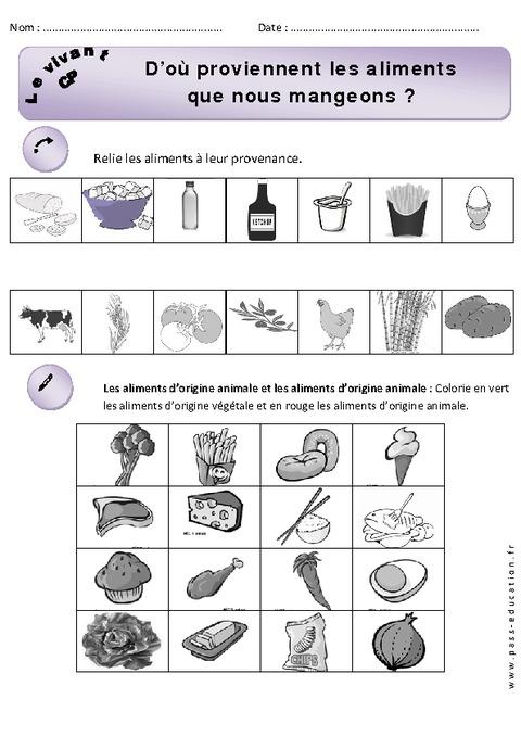 Aliments que nous mangeons cp exercices d couverte for Vegetal en anglais
