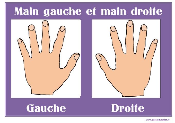 Main gauche main droite affichages pour la classe for Service a table a droite ou a gauche