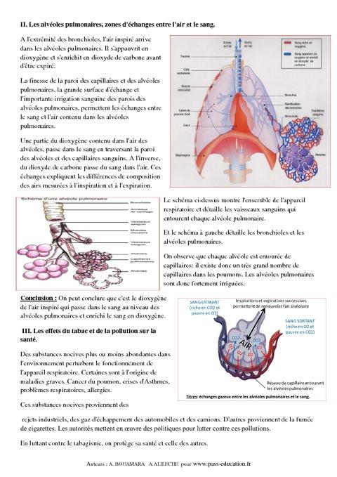 Respiration - Apport du dioxygène au sang – 5ème – Cours ...