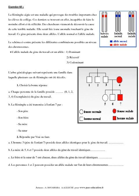 exercices svt 3ème