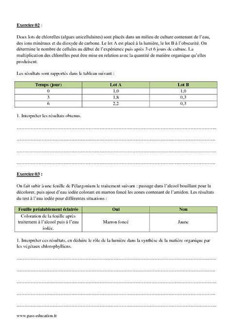 Photosynthèse - 2nde - Exercices corrigés - Pass Education