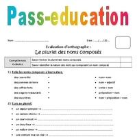 Pluriel Des Noms Composes Cm2 Bilan Avec Le Corrige Pass Education