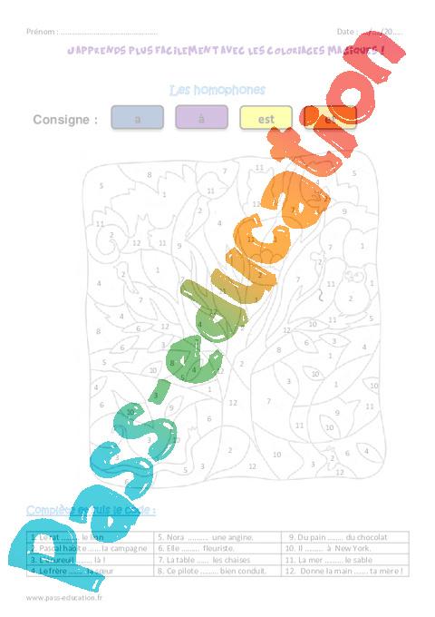 coloriage magique homonymes grammaticaux