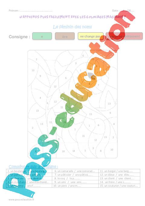 Feminin Des Noms Ce2 Coloriage Magique Pass Education