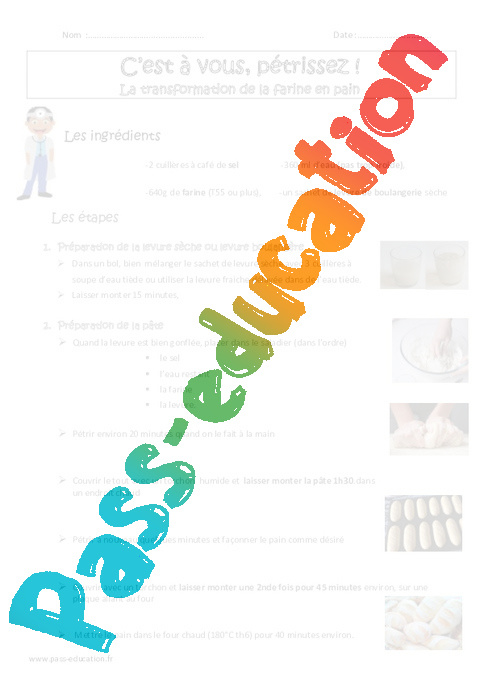 transformation des aliments cm1 cm2 exercices pass. Black Bedroom Furniture Sets. Home Design Ideas