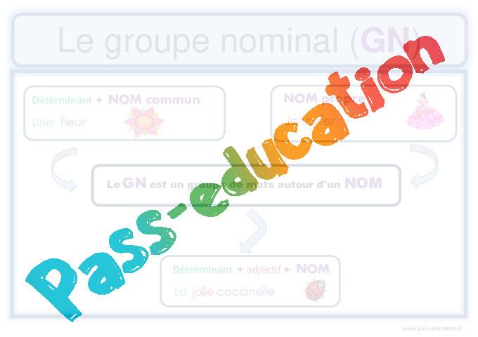 Groupe nominal - Cm1 - Affiche pour la classe - Pass Education