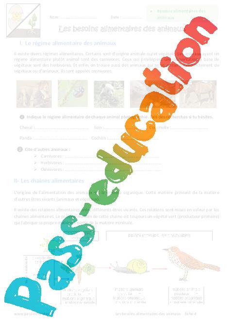 Régime alimentaire des animaux – Ce1 – Monde animal – Exercices – Découverte du monde – Cycle 2