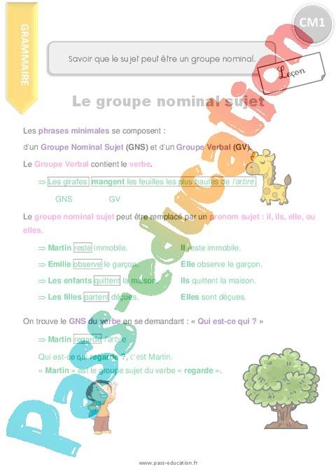 Leçon, trace écrite Groupe nominal : CM1 - Cycle 3 - Pass ...