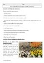Cours et exercice : Aires cérébrales et perception visuelle : Première ES L - 1ère ES L