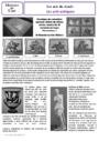 Leçon et exercice : Arts du visuel : CE2