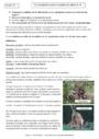 Cours Reproduction sexuée et maintien des espèces : 4ème