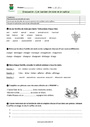 Evaluation Vocabulaire : CM1