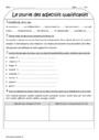 Exercice Accord de l'adjectif qualificatif : CE2