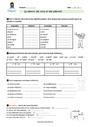 Exercice Accord du nom / pluriels particuliers : CM2