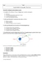 Exercice La gravitation universelle : Seconde - 2nde