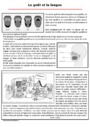 Exercice Le corps humain et l'éducation à la santé : CE2