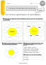 Exercice Mots étiquettes : CM2
