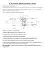 Leçon et exercice : La reproduction des végétaux et des animaux : CM1