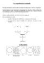 Leçon et exercice : La reproduction des végétaux et des animaux : CM2