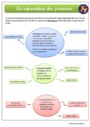 Leçon et exercice : Le droit et la règle : CM1