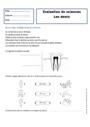 Leçon et exercice : Les dents : CE1