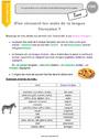 Leçon et exercice : Niveau de langue : CM1