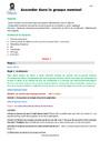 Séquence - Fiche de préparation Accord dans le groupe nominal : CM1