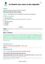 Séquence - Fiche de préparation Accord du nom / pluriels particuliers : CM2