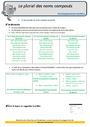 Révision, soutien scolaire - Accord du nom / pluriels particuliers : CM2