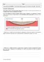 Cours et exercice : Tectonique des plaques et géologie appliquée : Première