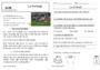 Leçon et exercice : Textes informatifs / Documentaires : CP