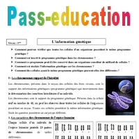 Information génétique - Cours - SVT : 3eme Secondaire ...