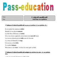 Adjectif Qualificatif Attribut Ou Epithete Cm2 Exercices Corriges Grammaire Cycle 3