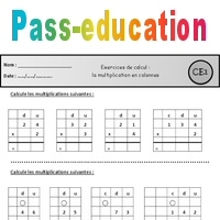 Multiplication en colonnes - Ce1 - Exercices - Pass Education