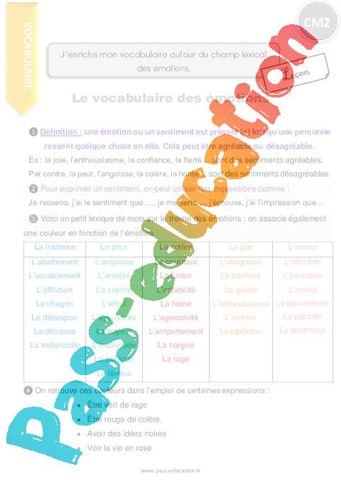 J Enrichis Mon Vocabulaire Autour Du Champ Lexical Des émotions Cm2 Leçon
