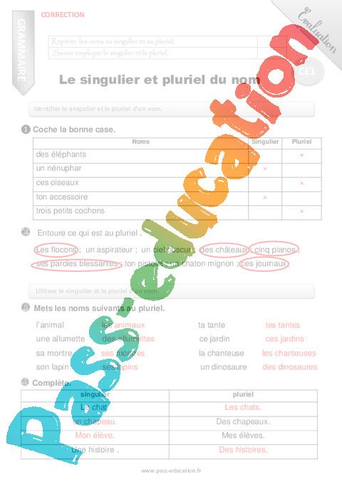 Singulier et pluriel du nom - Evaluation - Bilan - CE1 ...