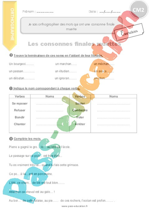Exercice Lettre finale muette : CM2 - Cycle 3 - Pass Education