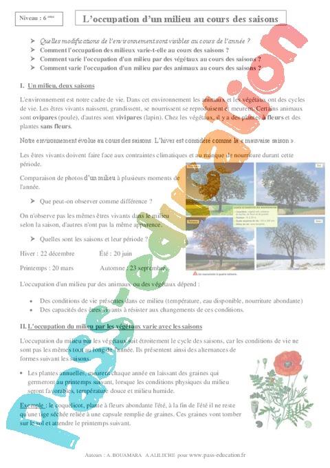 Svt 6eme Cycle 3 Soutien Scolaire Exercices Cours Evaluation Revision