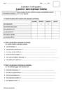 Leçon et exercice : Accord dans le groupe nominal : CE2