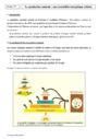 Cours Alimentation et production animale : Première
