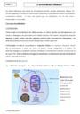 Cours Métabolisme cellulaire : Seconde - 2nde