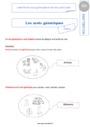 Leçon Mots étiquettes / termes génériques et particuliers : CE1