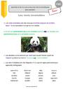 Leçon Mots outils, invariables : CM1