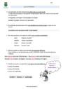 Leçon Synonymes : CM2