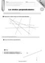 Evaluation Droites perpendiculaires : CM2