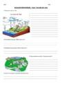 Evaluation L'éducation à l'environnement : L'eau : CM1